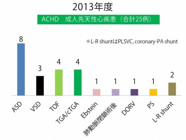 ACHD カテ 2013年